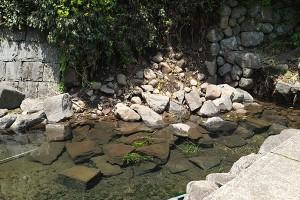 地震で崩れた石垣[寺坂水源]