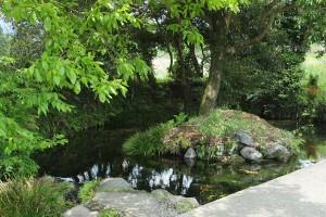 地震の被害なし[池の川水源]