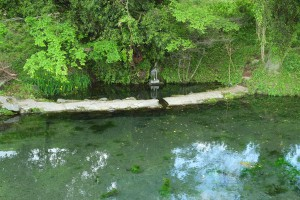 熊本地震後の小池水源