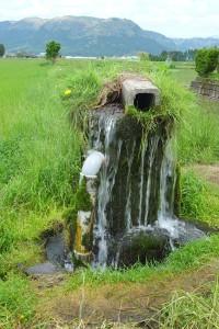 阿蘇一の宮の湧き水
