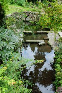 庭の池のような水源[川地後水源・南阿蘇村]