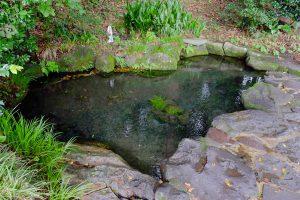 湧水源の池[明神池名水公園・南阿蘇村]
