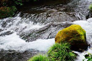 毎分60トンの湧水量[白川水源・南阿蘇村]