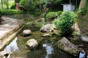 妙見神社の池[熊本県阿蘇郡南阿蘇村久石1068]