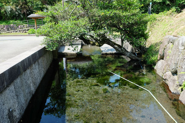 wakisawazu water source