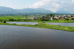 北側の農耕地帯[妙見神社の池・南阿蘇村]