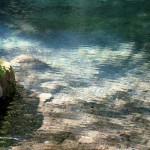 地震後 約2年ぶり湧き水復活[塩井社水源・2018年7月31日 現在]