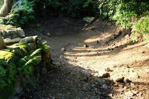 干上がったままの水源池[塩井社水源・地震後7月31日]