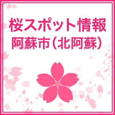 阿蘇市の桜スポット(地図・場所)