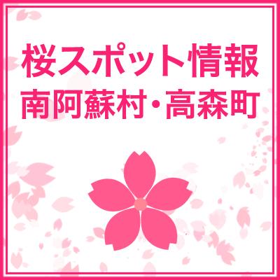 南阿蘇村・高森町の桜スポット(地図・場所)