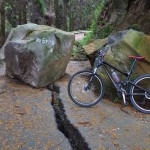 熊本地震による落石と地割れ[西原村村道]