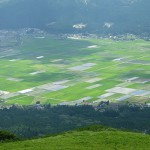 カルデラ平野部の農耕地[大観峰・散策コース]