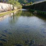 トンネル前の水場[高森町湧水トンネル公園・高森]