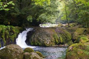 黎明の滝〔熊本 菊池渓谷]