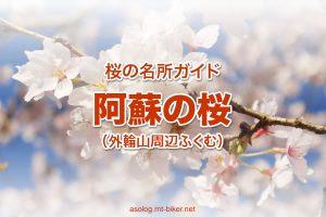 阿蘇 桜の名所[2020 阿蘇神社 現在状況]
