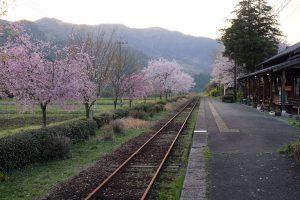 長陽駅[南阿蘇村:桜 名所]