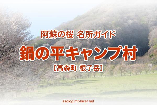鍋の平キャンプ村[阿蘇 高森町 桜の名所]