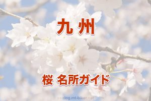 九州[桜 花見 見どころ 場所]