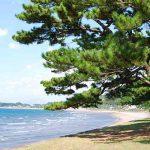 浜田海水浴場[きれいな鹿児島 白浜ビーチ]