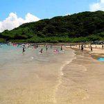 相賀の浜海水浴場[きれいな佐賀 白浜ビーチ]