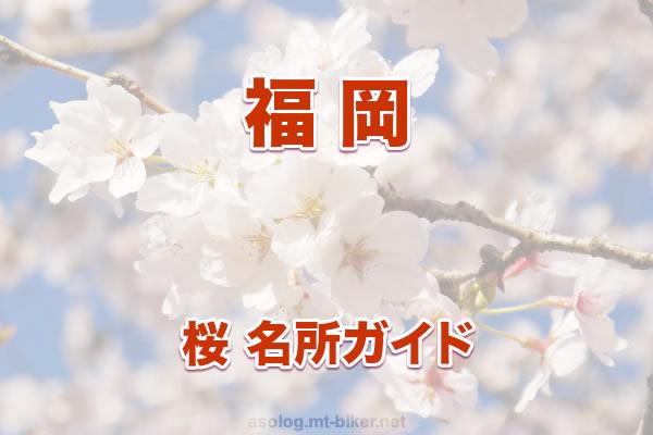 福岡[桜 花見 見どころ 場所]