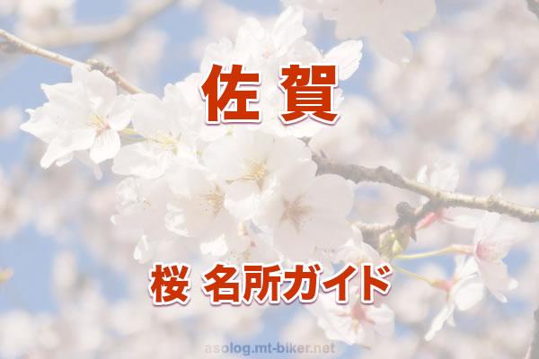 佐賀[桜 花見 見どころ 場所]