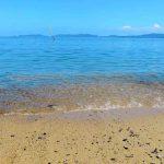 瀬会海水浴場[きれいな大分 白浜ビーチ]