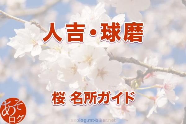 人吉球磨[桜 花見 見どころ 場所]